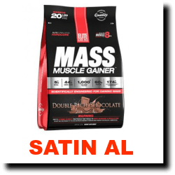 elite-labs-mass-muscle-gainer-4608-gram-500x500