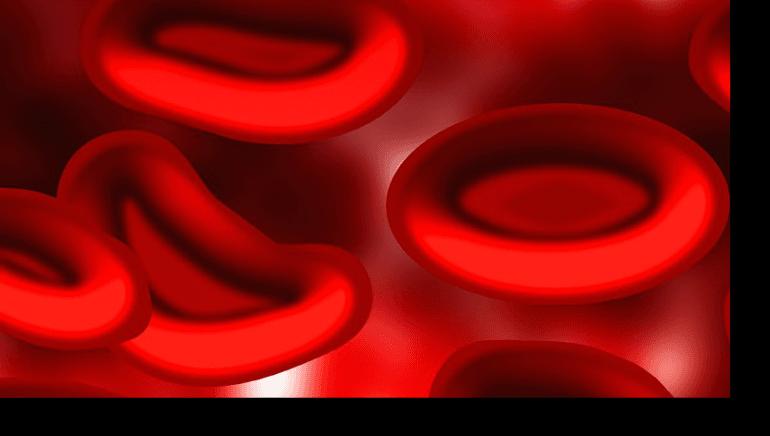 Kan Şekeri